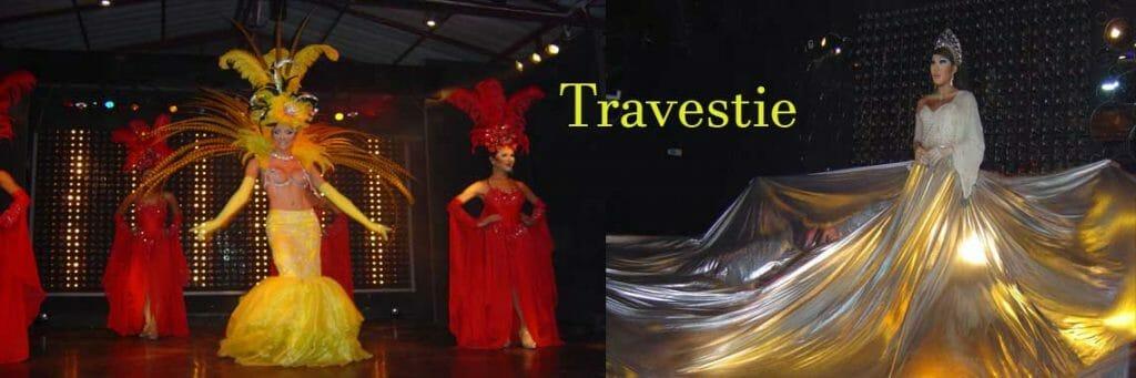 Unterhaltungskünstler als Travestiekünstler, Travestie, Gesang